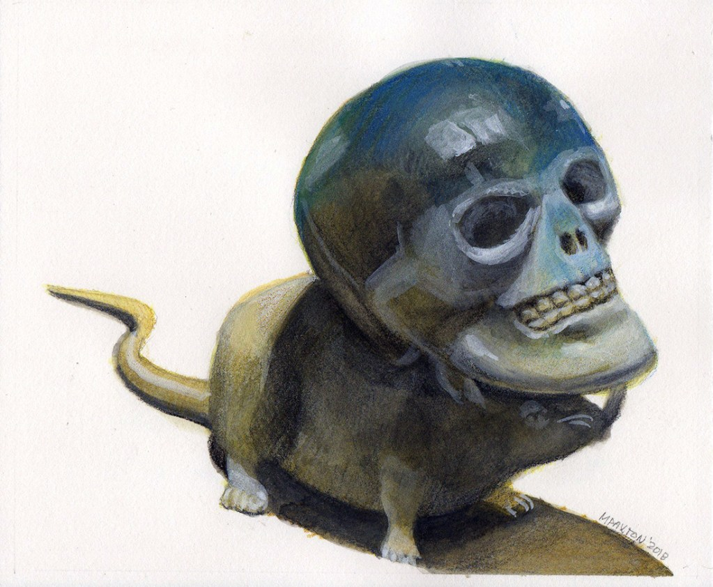 Artwork by Maureen Paxton. A ssmall study, a small human skull (facsimile) poised on the head of a white plastic rat